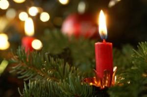 Brandveilige kerstboom (1)